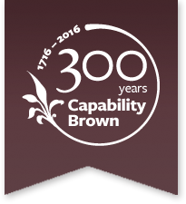 Caperbilty Brown Logo